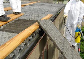 3 Day Asbestos Abatement (#NB1884)